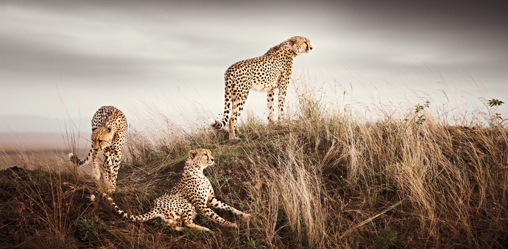 africa-photography-by-klaus-tiedge-photo-05
