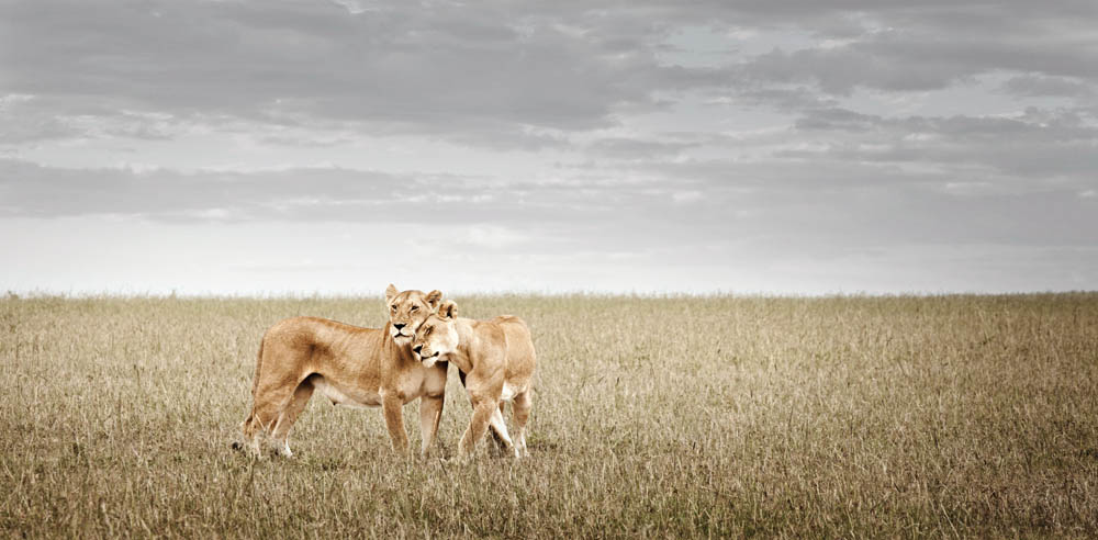africa-photography-by-klaus-tiedge-photo-09
