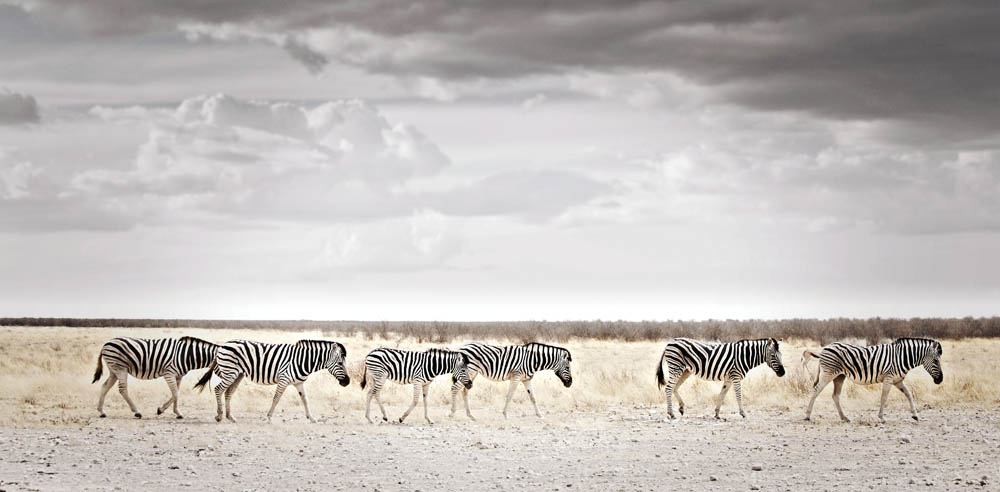 africa-photography-by-klaus-tiedge-photo-14