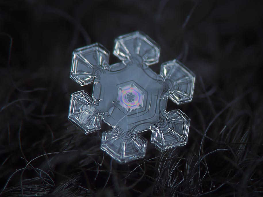snowflake closeup alexey kljatov 11