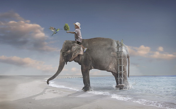 creative-photomanipulation-sulaiman-almawash-04