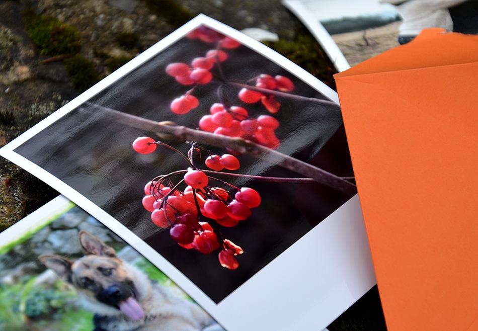 printic aplikácie recenzia fotografie detail